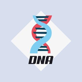 Dna 분자 구조 아이콘