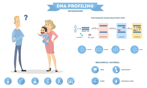 Dna and parenthood. health of baby from parents.
