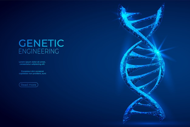 Dna polygonal genetic engineering abstract blue banner.