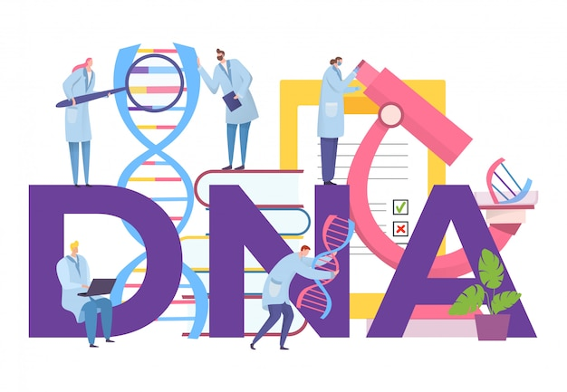 Dna research with gene in laboratory,  illustration. biothenology science work, man woman character study molecule
