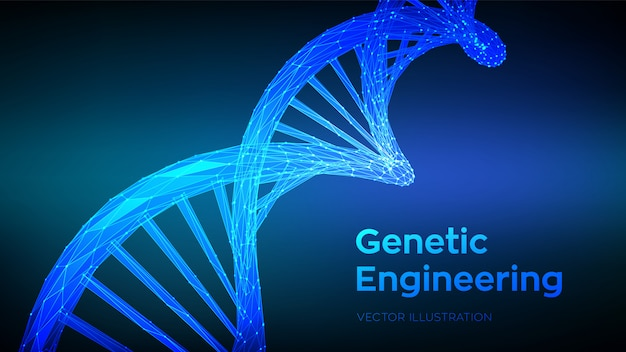 Dna sequence. abstract 3d polygonal wireframe dna molecules structure mesh. dna code