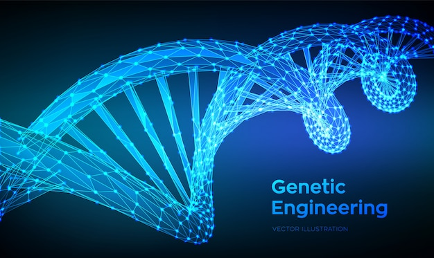 Dna sequence. abstract 3d polygonal wireframe dna molecules structure mesh.