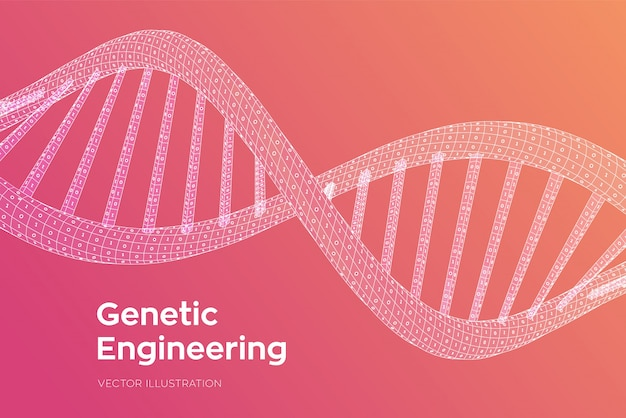 Dna sequence. concept binary code human genome. wireframe digital dna molecules structure mesh.