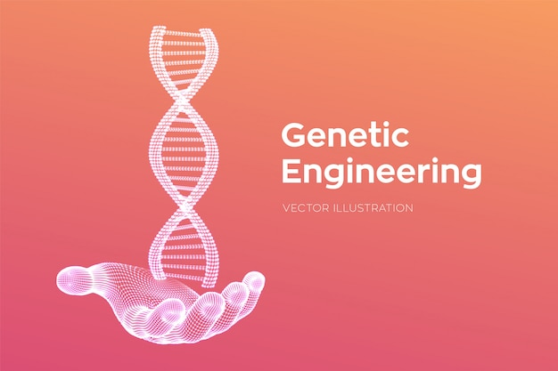 Dna sequence in hand. wireframe dna molecules structure mesh. dna code editable template. science and technology .  illustration.