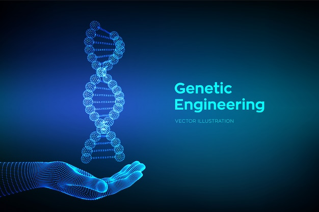 손에 dna 서열. 와이어 프레임 dna 코드 분자 구조 메쉬.