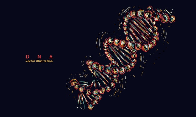 Dnaスパイラル分子。現代医学と科学