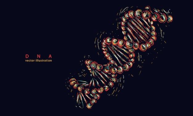 Dna spiral molecule. modern medicine and science Premium Vector