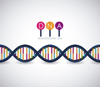 Dna structure chromosome icon