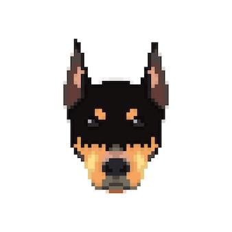 Doberman head in pixel art style.