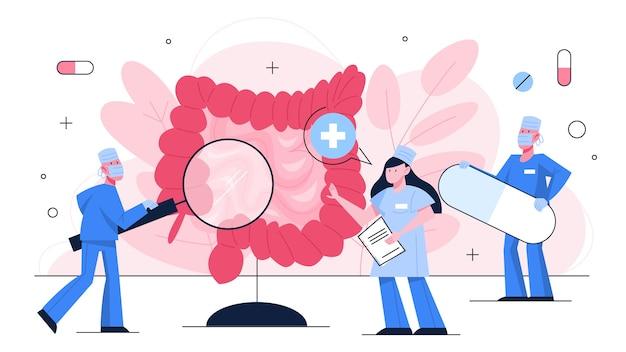 医師は、人間の腸の検査の概念を確認します。体の健康と医療のアイデア。人間の解剖学。