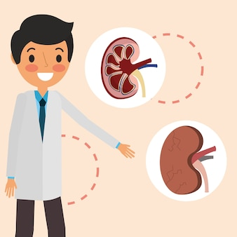 Доктор профессиональные части почек органов