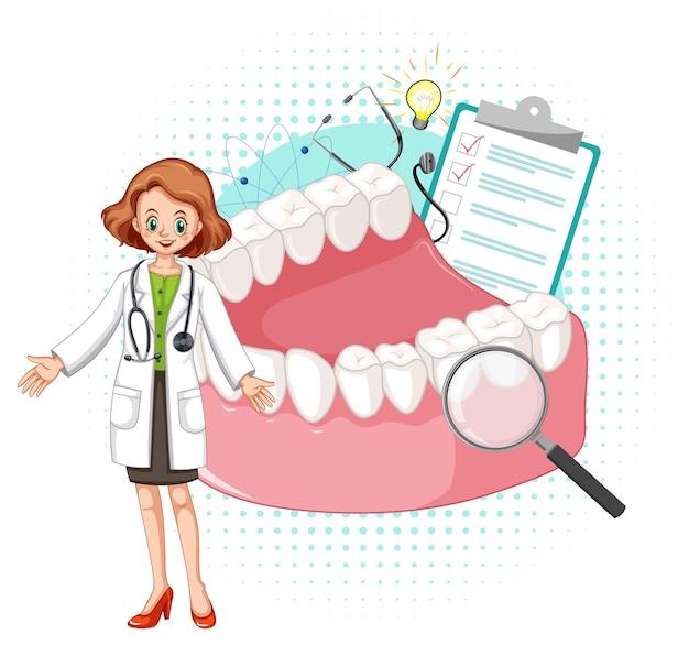 Medico e modello di denti su sfondo bianco
