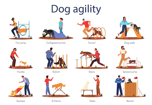 Dog agility set. training exercise for pet. woman and man training
