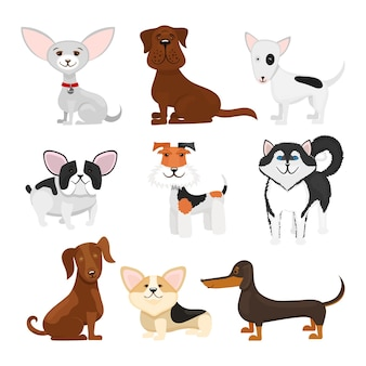 Dog breeds cartoon set. set breeds pet funny puppy illustration