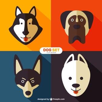 フラットスタイルで犬の品種