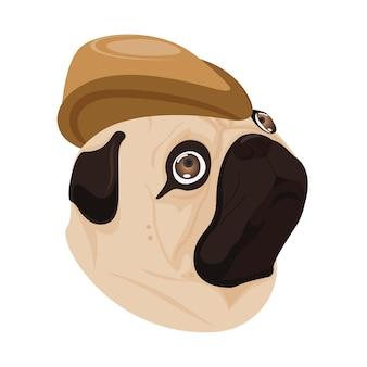 Dog brown hat on white background