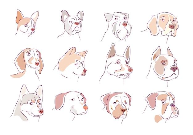 Dog collection. puppy set.