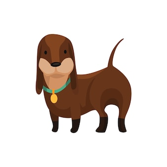 犬のダックスフント。かわいい面白いキャラクターの肖像画。体の長い足の短いペットが4匹に立っています。愛らしい漫画のベクトル図