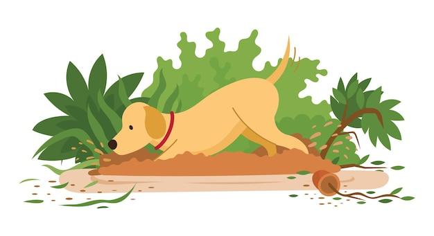 Собака роет и разрушает сад или закапывает что-то в почву
