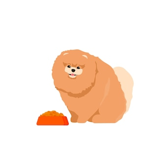 Собака ест еду из миски