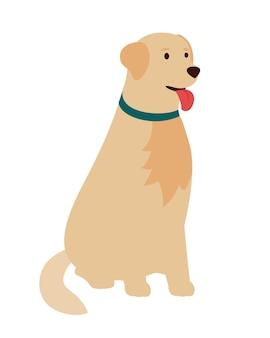 犬のゴールデンレトリバー、座っています。フラットベクトルイラスト