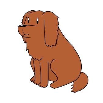 Dog, golden retriever