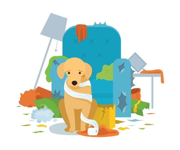 Собака виновата в уничтожении мебели в доме