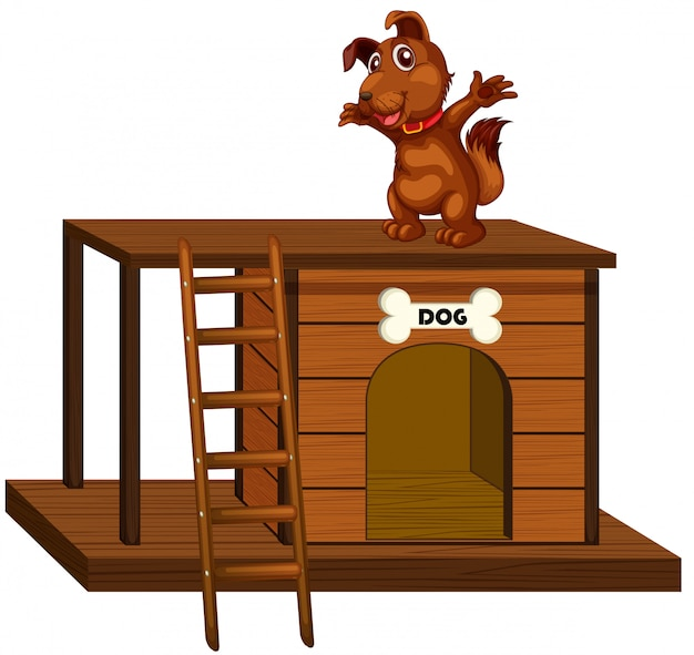 Dog house with cute dog standing isolated
