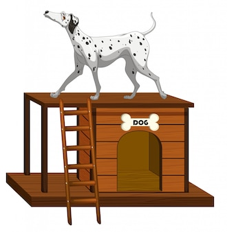 Dog house with cute dog standing