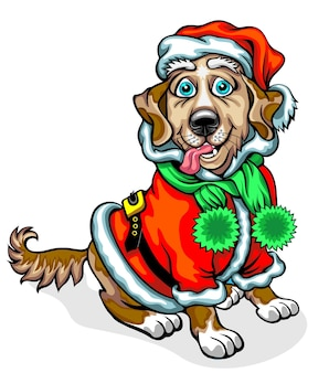 Dog in the image of santa claus