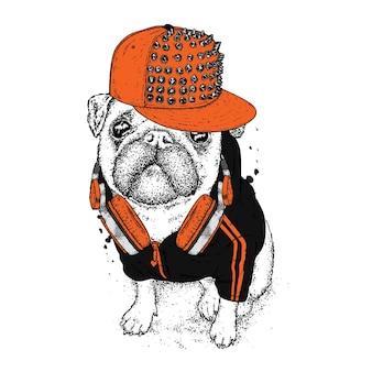 帽子のイラストの犬