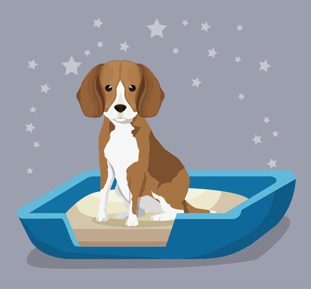 모래 상자 애완 동물 친절한 개