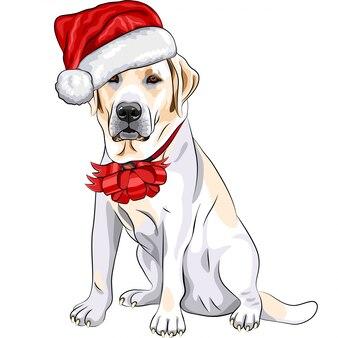 Собака лабрадор в шапке деда мороза с рождественским бантом