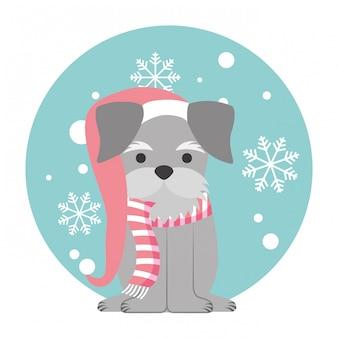 Dog merry christmas card
