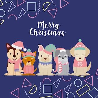 Dog merry christmas celebration