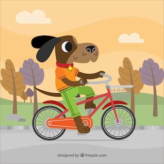 자전거 배경에 개