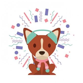 Dog party celebration