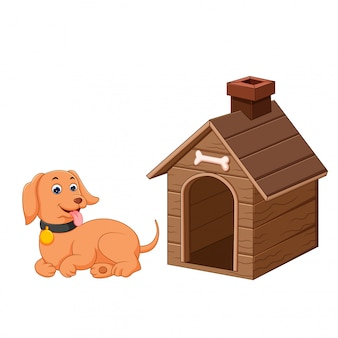 Dog and pet dog house