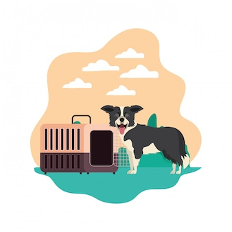Dog and pet transport box with landscape