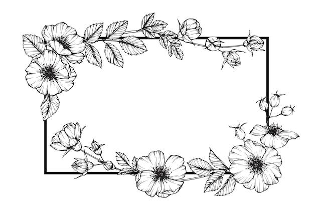 개 장미 꽃 프레임 그림 그리기