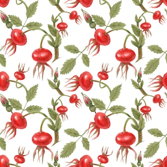 Dog rose fruits seamless pattern by traced watercolor