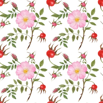 Dog rose seamless pattern