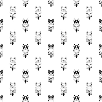 Dog seamless pattern french bulldog riding bicycle