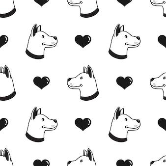 개 완벽 한 패턴