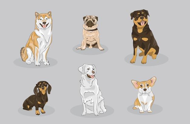 Dog set that contains differen breeds