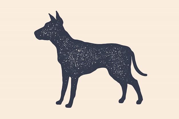 개, 실루엣. 집 동물의 개념