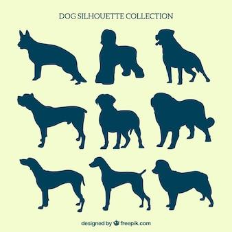 異なる品種の犬のシルエット