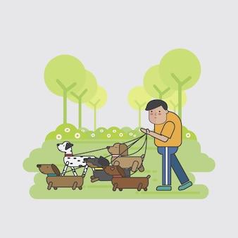 Собачий ходок, идущий по пачке собак