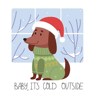 The dog in winter clothes.baby it's cold outside.funny dachshund in a winter sweather and santa hat.