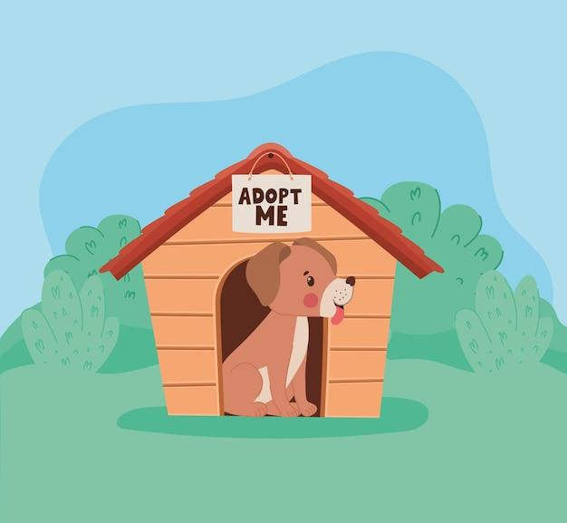 Собака с собачьей будкой